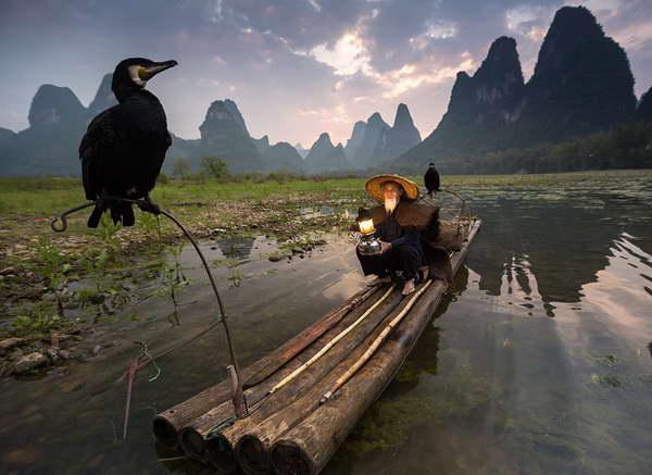 cormorant fishing li river Yangshuo Mountain Retreat